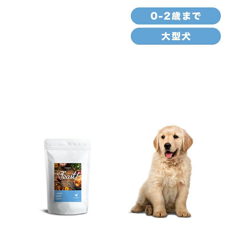 INUMESHI フィースト 子犬用 大型犬用 1kg
