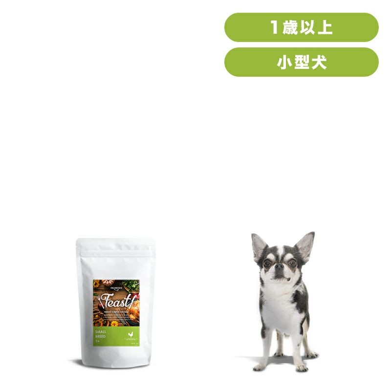 INUMESHI フィースト 1歳以上 小型犬用 1kg