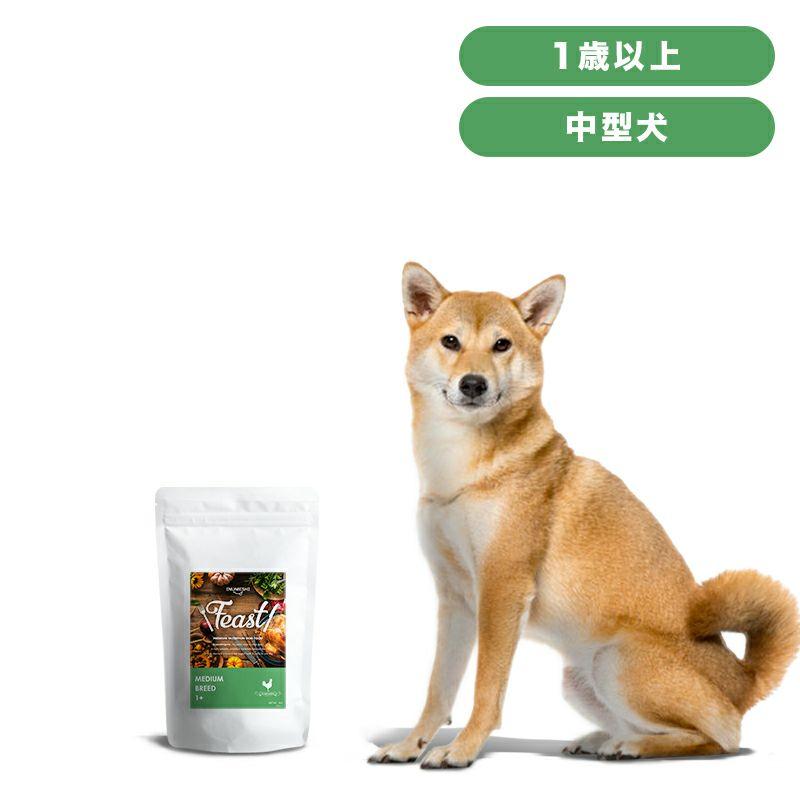 INUMESHI フィースト 1歳以上 中型犬用 1kg