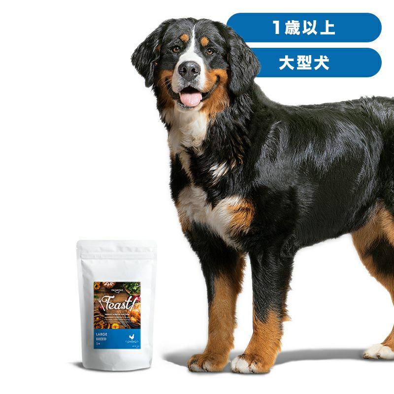 INUMESHI フィースト 1歳以上 大型犬用 1kg