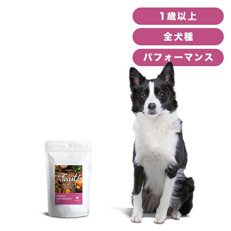 INUMESHI フィースト プレミアム パフォーマンス 1歳以上 活発犬用 1kg