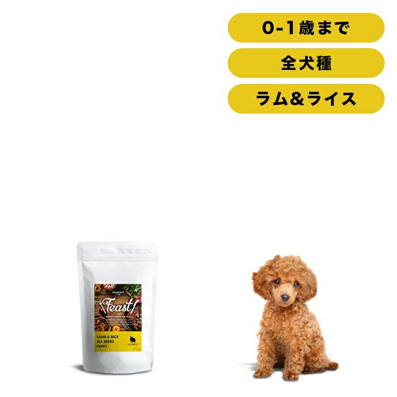 INUMESHI フィースト ラム&ライス 子犬用 全犬種用 1kg