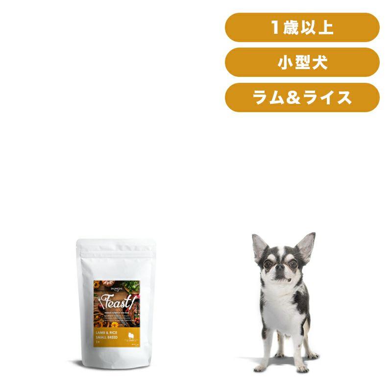 INUMESHI フィースト ラム&ライス 1歳以上 小型犬用 1kg