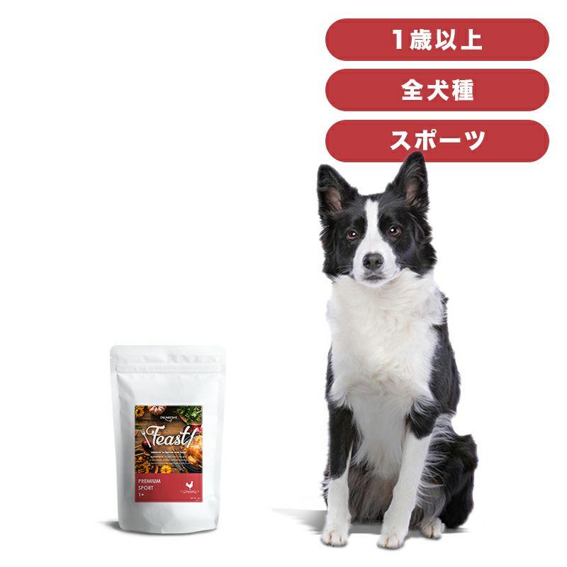 INUMESHI フィースト プレミアム スポーツ 1歳以上 活発犬用 1kg